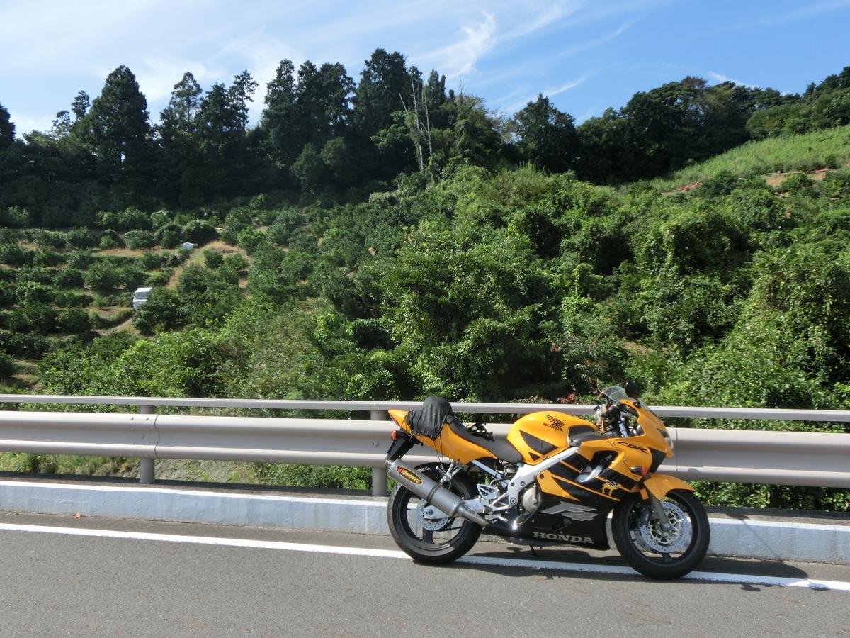 f:id:bikeshop-airu:20201003175532j:plain