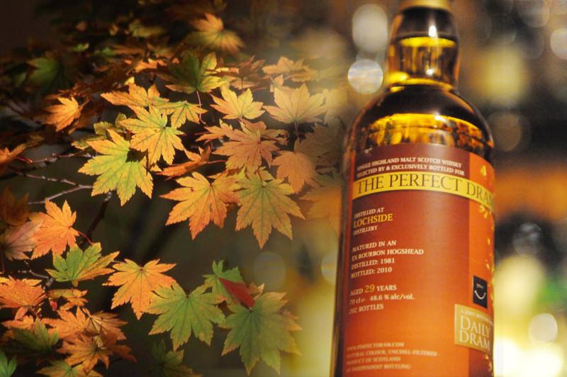 f:id:bilbao-jp:20121009103858j:image:w510:left