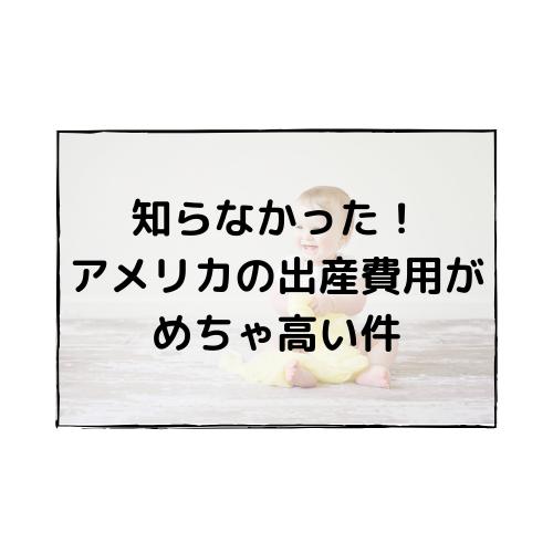 f:id:bilingual-obasan:20190515155021p:plain