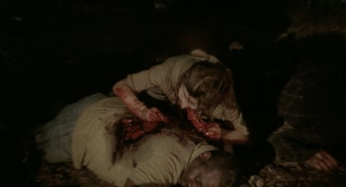 ウォーキング・デッドシーズン1第4話
