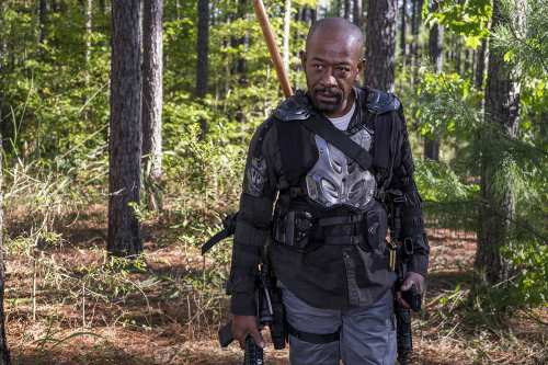 ウォーキングデッドシーズン8第14話ネタバレ感想『主食はカブ』