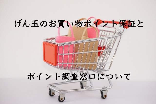 げん玉のお買い物ポイント保証制度とポイント調査窓口利用上の注意