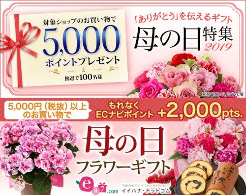 母の日キャンペーン!イイハナ・ドットコムで2,000pts.プレゼント&抽選で100名に5,000pts.プレゼント!