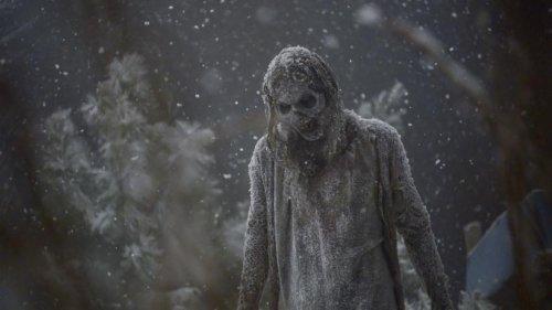 ウォーキングデッドシーズン9最終回16話『アルファらの越冬方法が気になる』妙な感想文ネタバレ