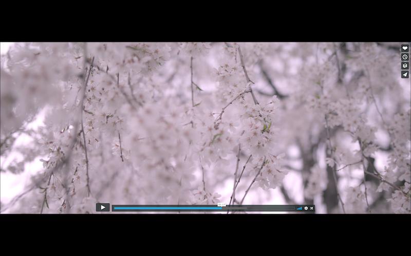f:id:binomi-video:20180330114809p:plain