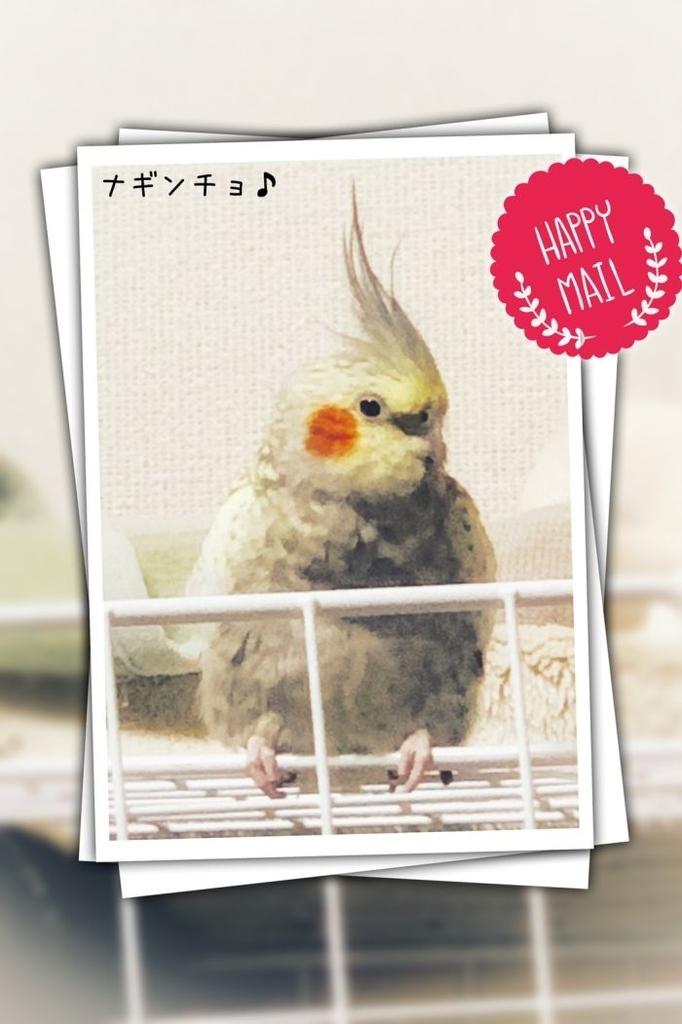 f:id:birdcrown:20181008235946j:plain