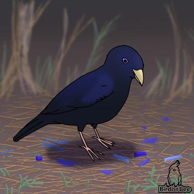 f:id:birdistbee:20170617214705j:plain
