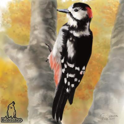 f:id:birdistbee:20170618223426j:plain