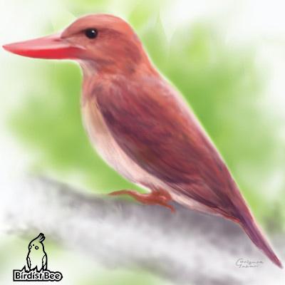 f:id:birdistbee:20170618223708j:plain