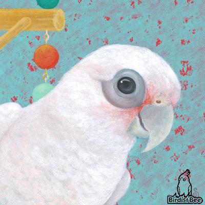 f:id:birdistbee:20170618225837j:plain