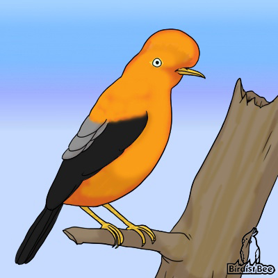 f:id:birdistbee:20170619222603j:plain