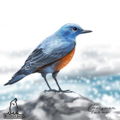 f:id:birdistbee:20170713213707j:plain