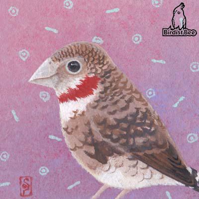 f:id:birdistbee:20170713220507j:plain