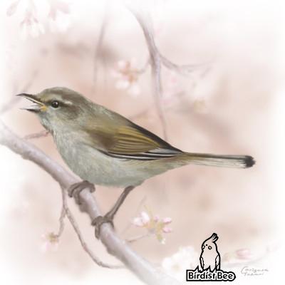 f:id:birdistbee:20170727133023j:plain