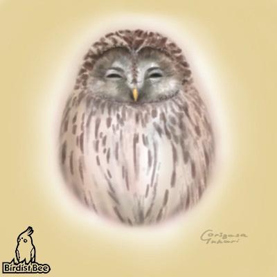 f:id:birdistbee:20170814222924j:plain