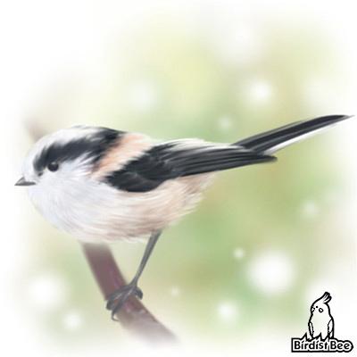 f:id:birdistbee:20170816222547j:plain
