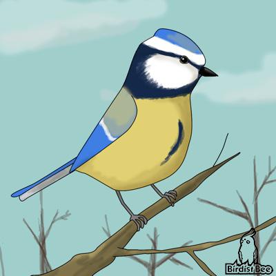 f:id:birdistbee:20171212222835j:plain