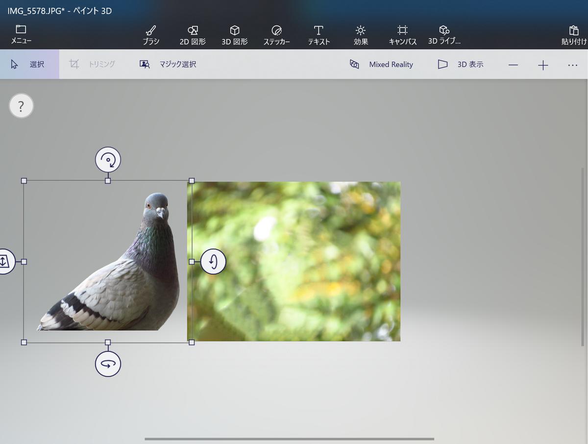 f:id:birdwatcherYT:20200730213507p:plain