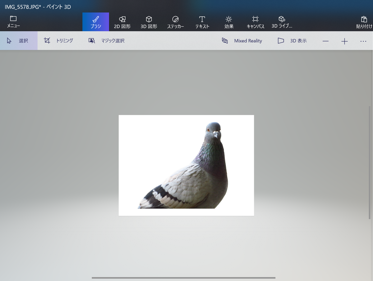 f:id:birdwatcherYT:20200730213836p:plain