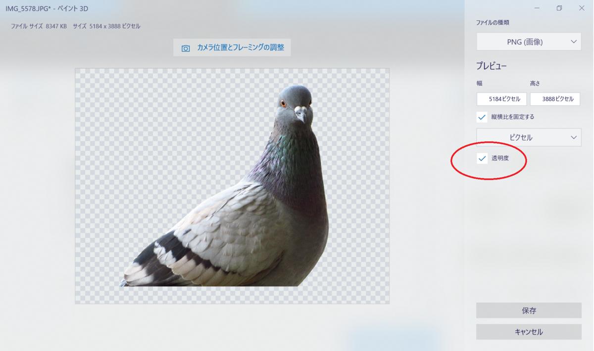 f:id:birdwatcherYT:20200730214055p:plain