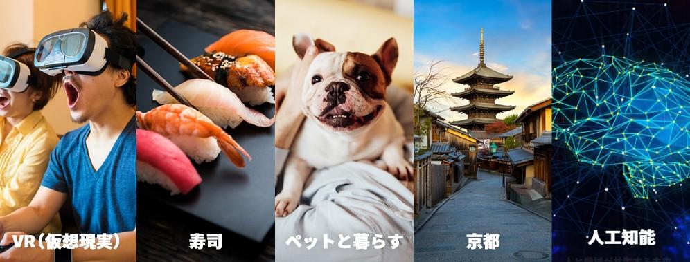 f:id:biskun:20190120113744j:plain