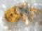 赤石鉱山産-自然金