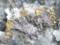 河津鉱山産-自然金