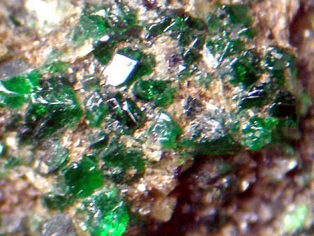 魅かれる鉱物の色彩~緑~ - 鉱...