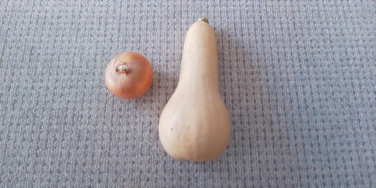 f:id:bitterharvest:20191011102715j:plain