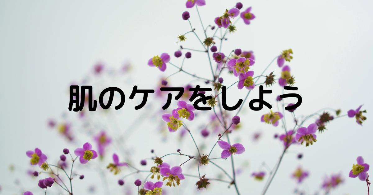 f:id:biyou_kenkou:20210507074125p:plain