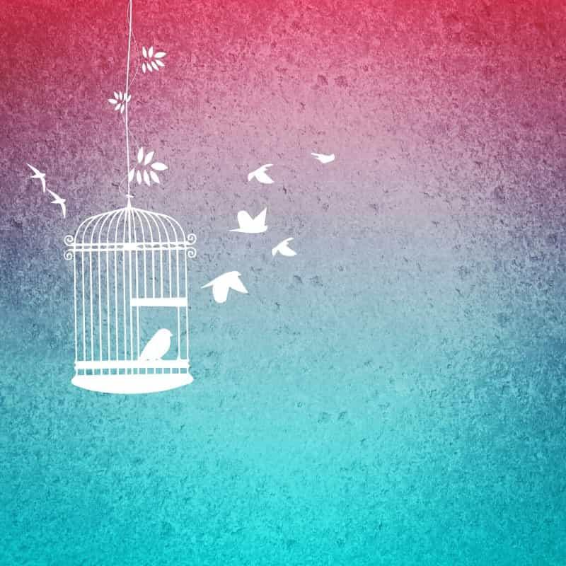 【日向坂46・Cageの歌詞に学ぶ】自尊心を高める「人を羨む前に自分から動き出すコツ」
