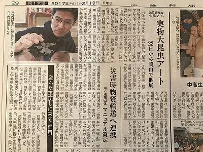 f:id:bizenwakakusa:20170219113406j:plain
