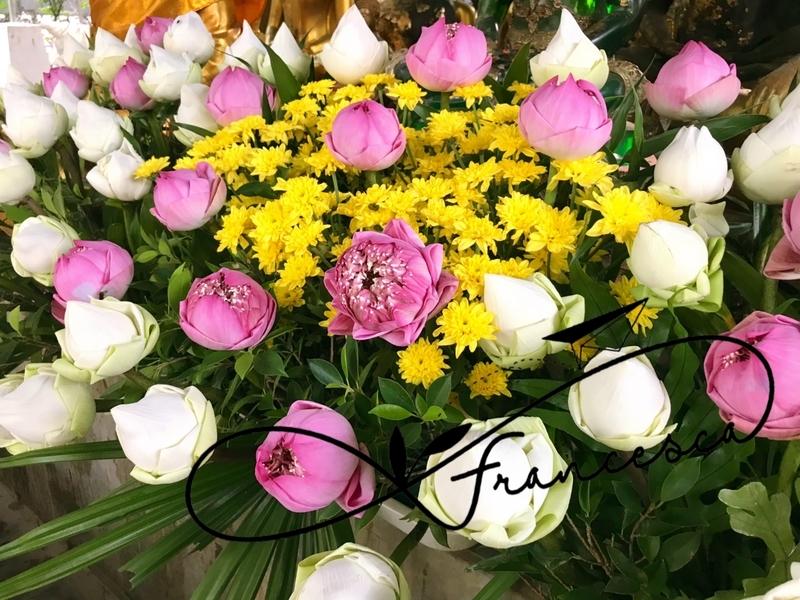 f:id:bkkfran:20190509155248j:image