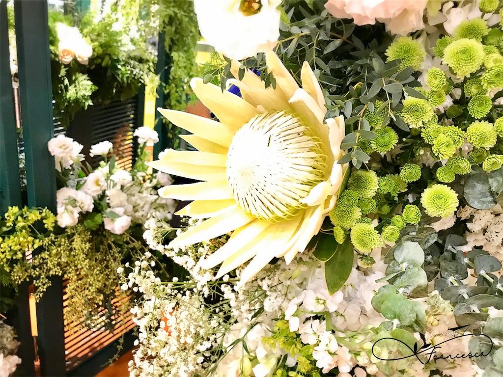 f:id:bkkfran:20191108100927j:image