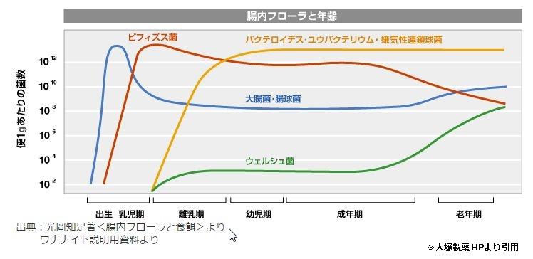年代別の腸内細菌数を表したグラフ