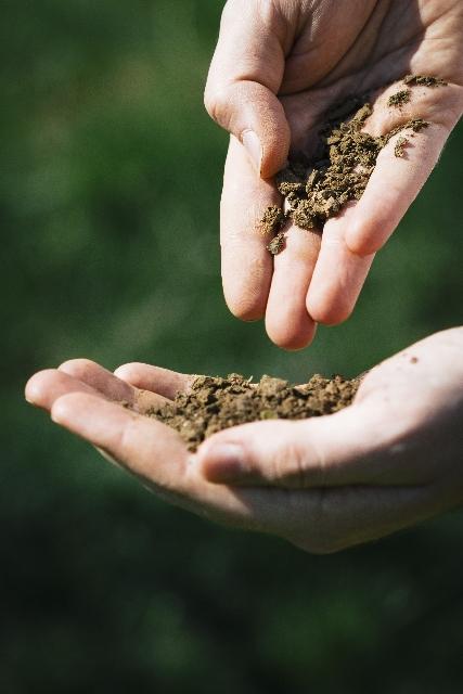 畑の土を触る手