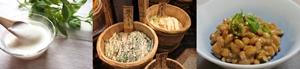 代表的な発酵食品