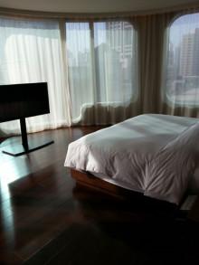 東京 高級 シティ ホテル 宿泊 グルメ ガイド-1360694957963.jpg