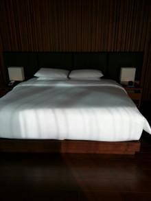 東京 高級 シティ ホテル 宿泊 グルメ ガイド-1360694872907.jpg
