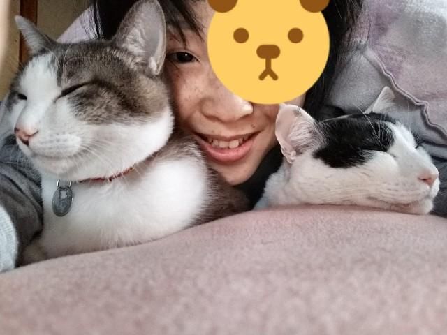 f:id:black-giant-kitty:20180502205941j:image