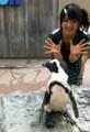 ペンギンとなっちゃん