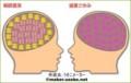 さゆとりほりほの脳内相性