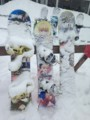 [24-26白馬スキー]