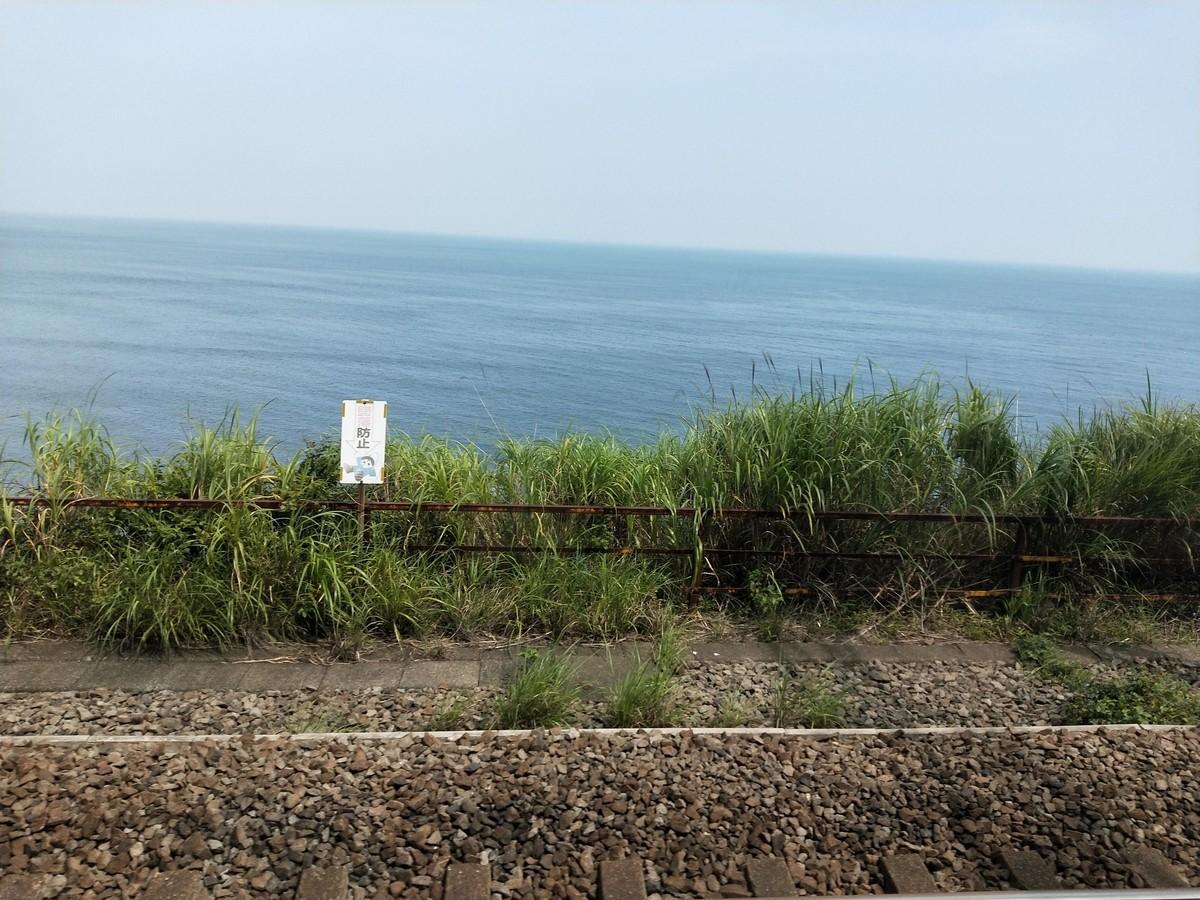 海はいい、遠くから見てるだけでも元気出る