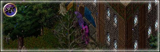 2015y11m29d_172112876_edited-1.jpg