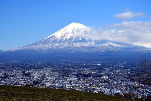 【静岡】安いおすすめの引越し業者ランキング