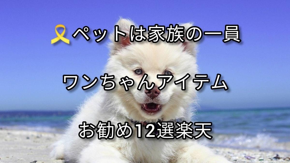 f:id:blog-fun-happy2-life:20210126202755j:plain