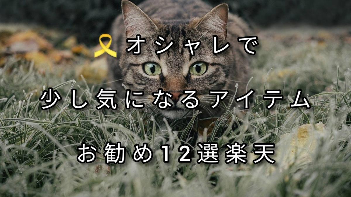 f:id:blog-fun-happy2-life:20210213220816j:plain