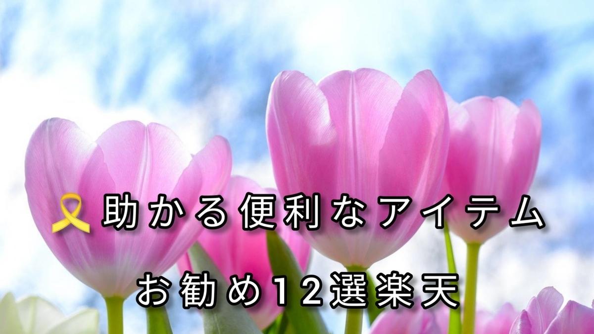 f:id:blog-fun-happy2-life:20210215003654j:plain