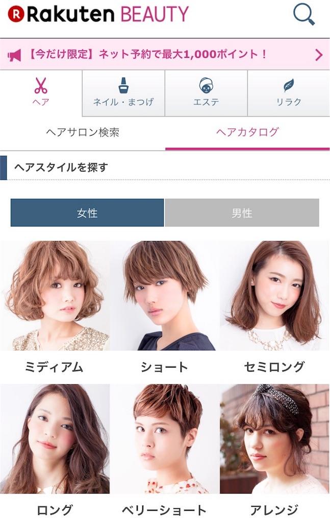 f:id:blog-japan:20160403110331j:image